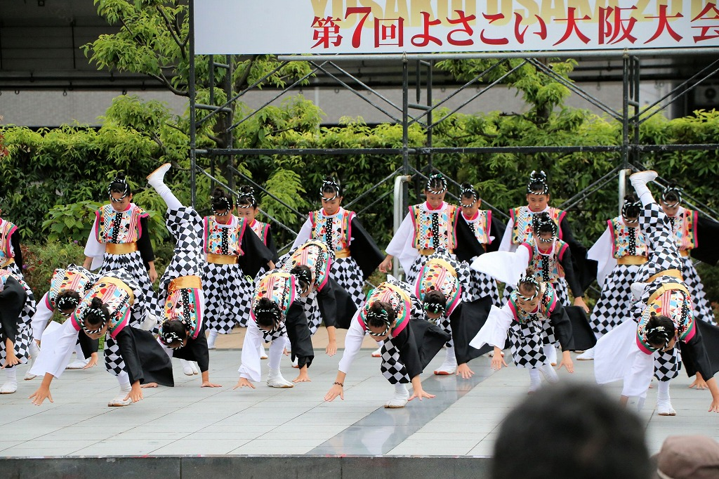 river16sakura 9