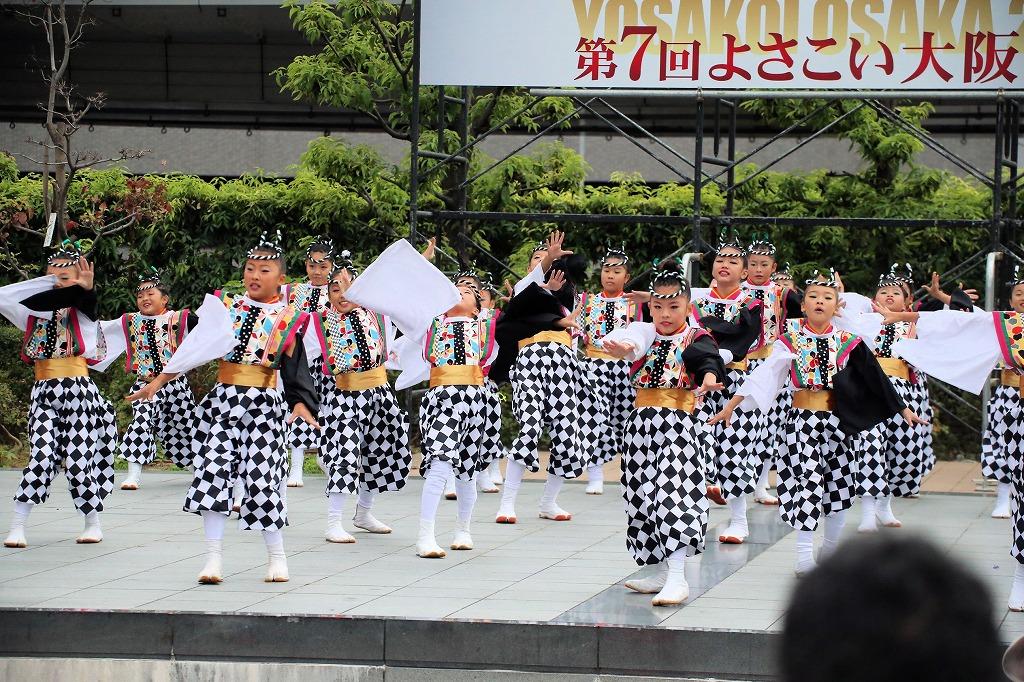 river16sakura 11