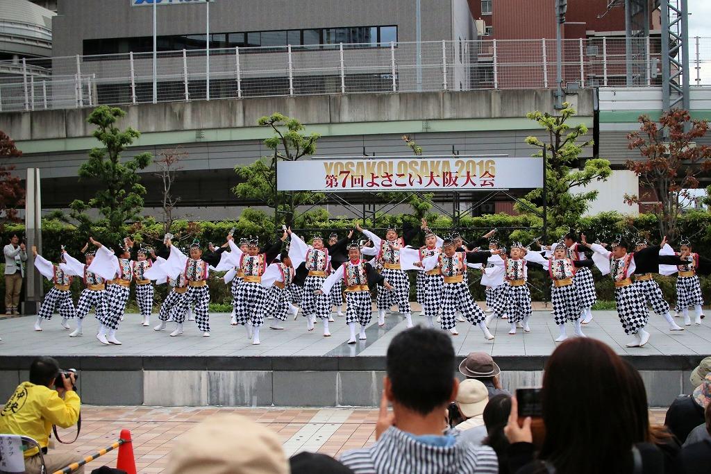 river16sakura 81