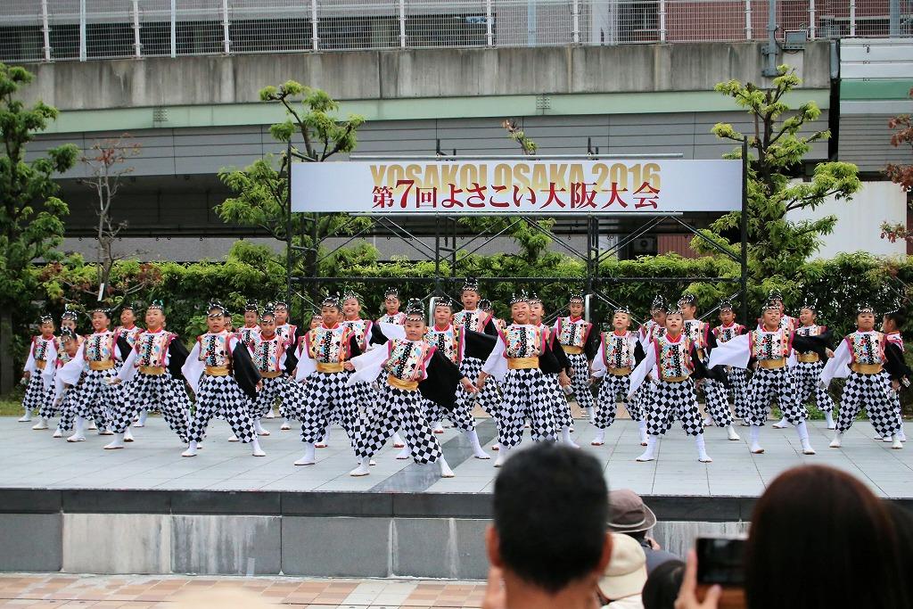 river16sakura 82