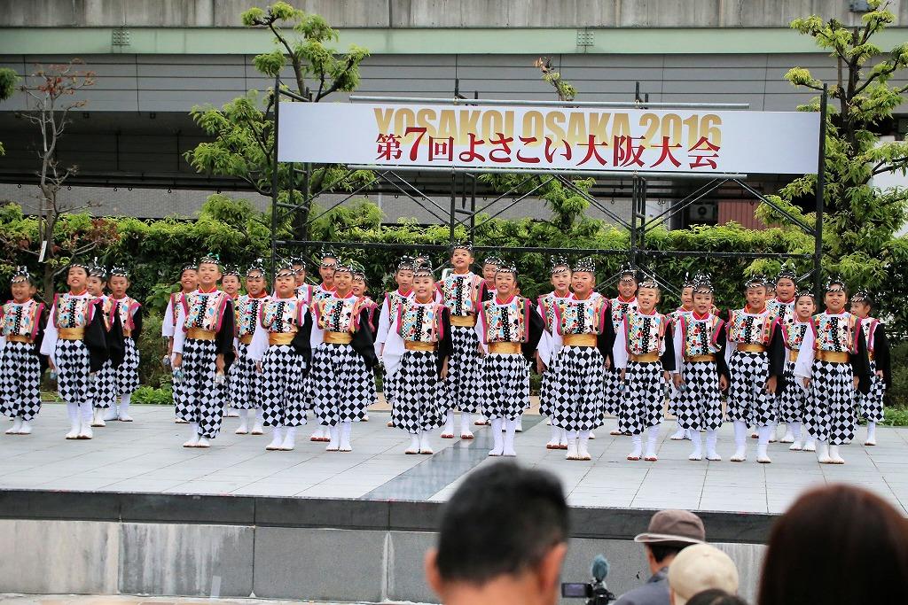 river16sakura 85