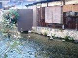 京都2016秋