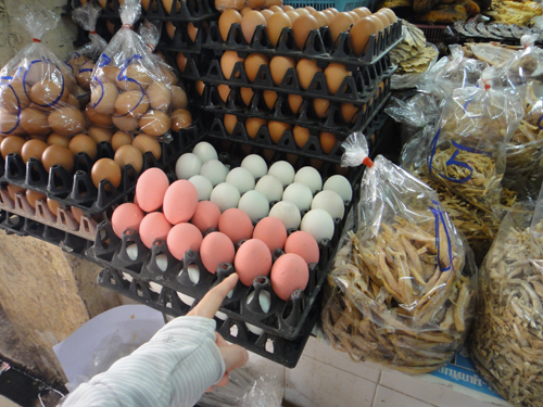 201702Thanin Market_Chiangmai-2