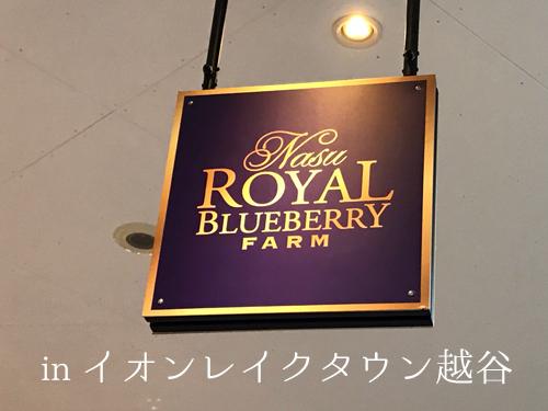 201702NasuRoyalBlueberry-6.jpg