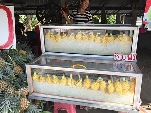 201702pineapple_Thailand-4.jpg