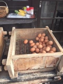 定番の温泉卵