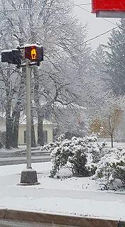 ミシガン大雪