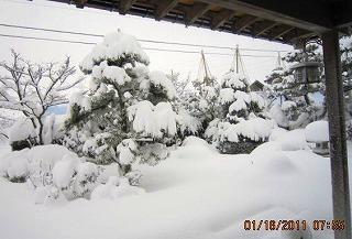 2011・1・18大雪