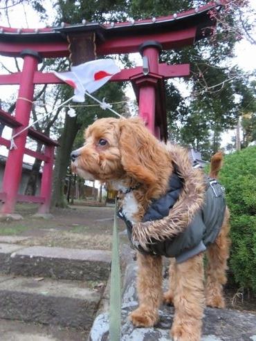 IMG_5222神社