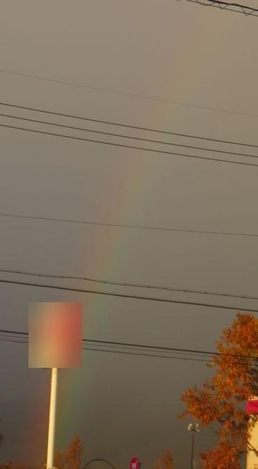 IMG_5253虹