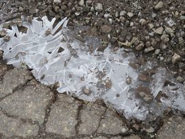 IMG_5498凍り