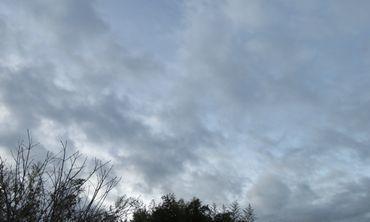 IMG_5790雲