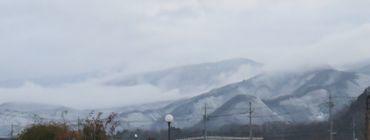 IMG_6161山