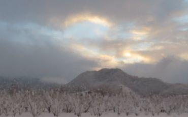 IMG_6264雪景色