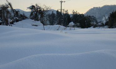 IMG_6357雪景色