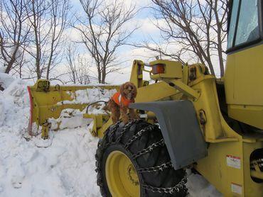 IMG_6458除雪車