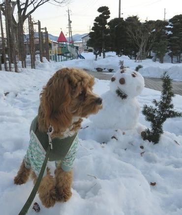 IMG_6631雪だるま