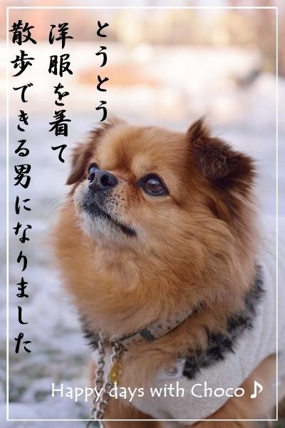 DSC_1648_01_2016112512405473d.jpg