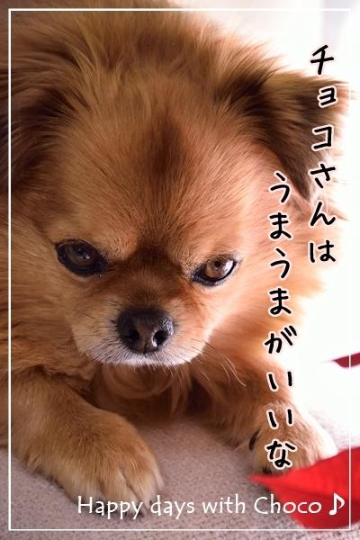 DSC_3178.jpg
