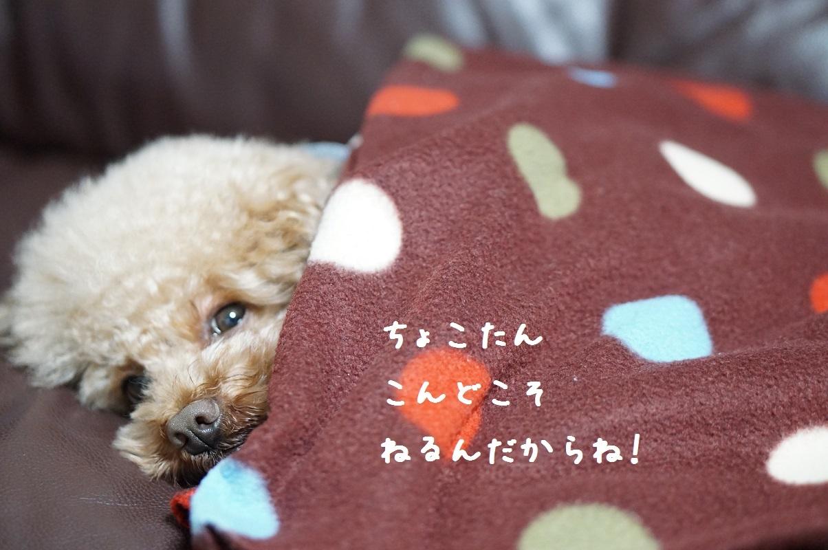 おやすみ2