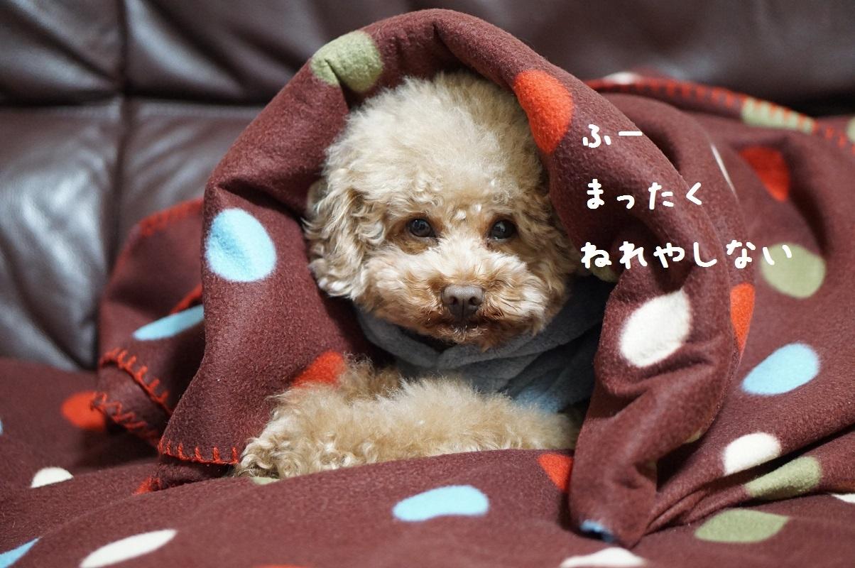 おやすみ4