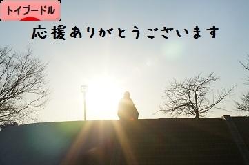 DSC04776bana.jpg