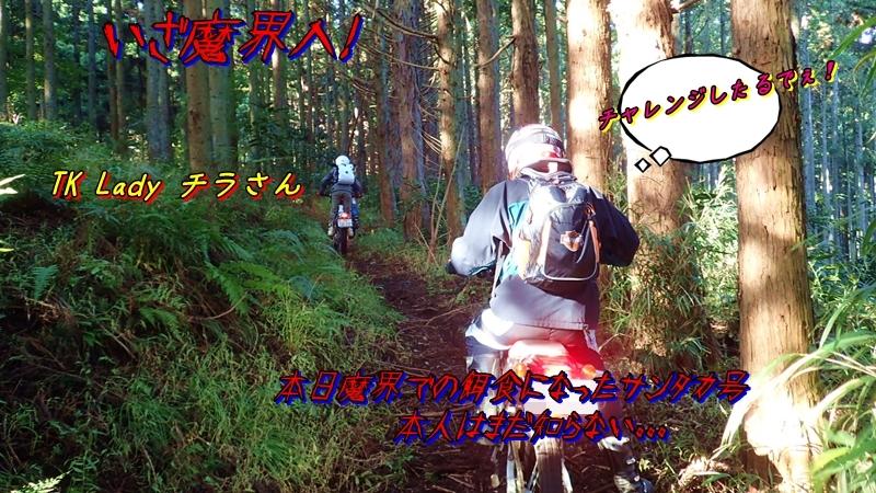 20161106008a.jpg