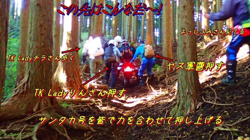 20161106012.jpg