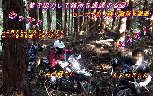 20161106014a.jpg