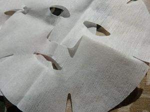 PA209153真水素フェイスマスク
