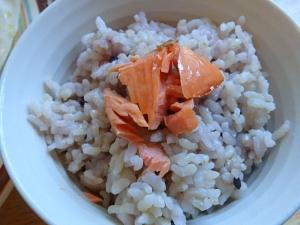 PB225979辛塩紅鮭の切身