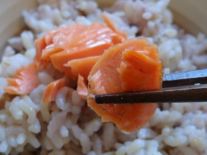 PB225984辛塩紅鮭の切身