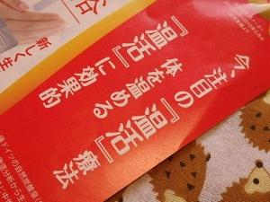 PB246065薬用ホットタブ重炭酸湯