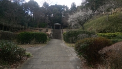 20170211鎌倉中央公園4