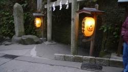 20170211鎌倉中央公園8