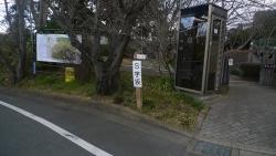 20170211鎌倉中央公園7