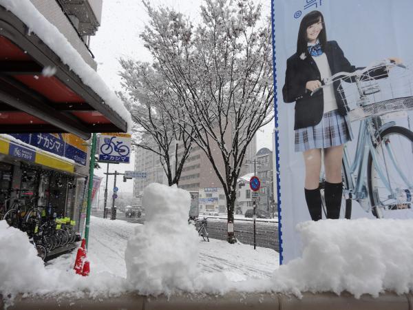 雪でも・・・
