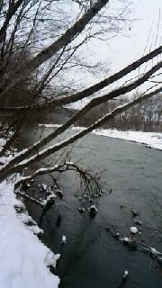 冬の釣り2回目
