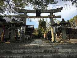 C1OV8YbVEAAYB2M今年の初詣は、神社庁から距離を置き