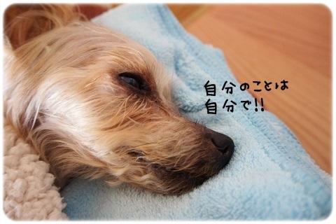 最後の力 (1)