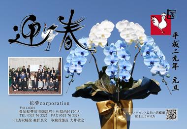 青い胡蝶蘭 ブルーエレガンス 年賀状 豊川 花屋 花夢