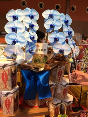 ボンとらや ピレーネ どらやき 青い胡蝶蘭 ブルーエレガンス 豊川 花屋 花夢