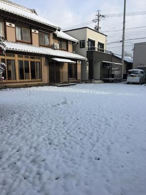 大雪 寒波 豊川 花屋 花夢
