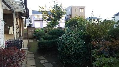 大宮の庭8