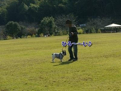 公園 (1)