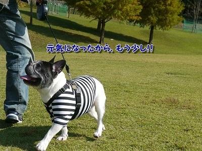 青山公園 (5)