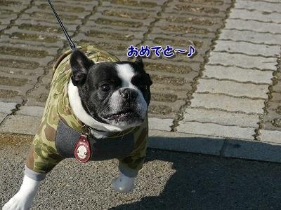 初遊び (3)