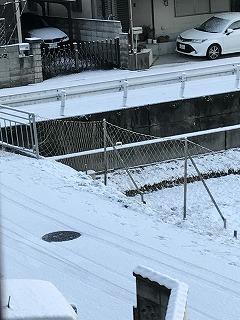 初雪 (2)
