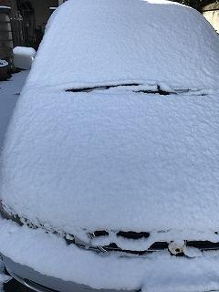 初雪 (3)