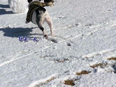 雪遊び (7)